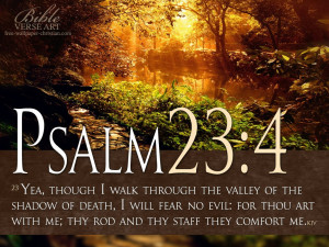 ... no evil: for thou art with me; thy rod and thy staff they comfort me