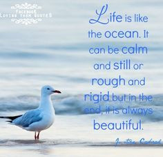 Ocean Quotes About Love Life is like an ocean quote
