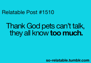 ... true story cats dogs pets so true teen quotes relatable funny quotes