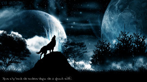 Blue And Black Wolf