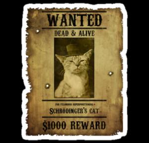 Artificialx › Portfolio › Schrodinger's Cat - Wanted