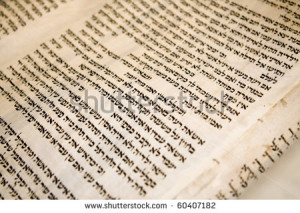 Hebrew text on one panel of a antique Torah scroll that is 150 years ...