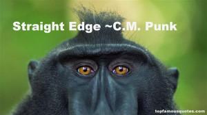 CM Punk Quotes Pictures
