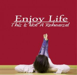 ... funny quotes enjoy life pillow 189043519 enjoy life quotation humor