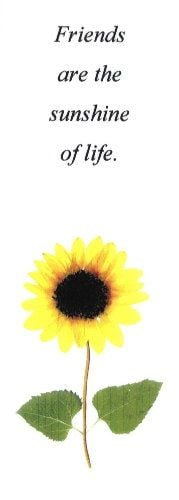 Sunflowers - Friendship quote - on a pressed flower bookmark More