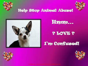 Help Stop Animal Abuse! Hmm ! Love ! I'm Confused!