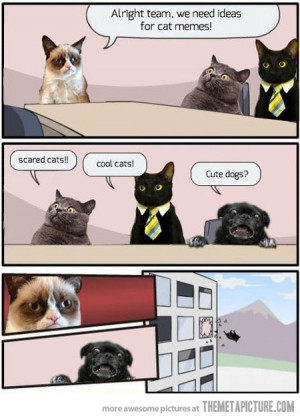 Funny Grumpy Cat Quotes…
