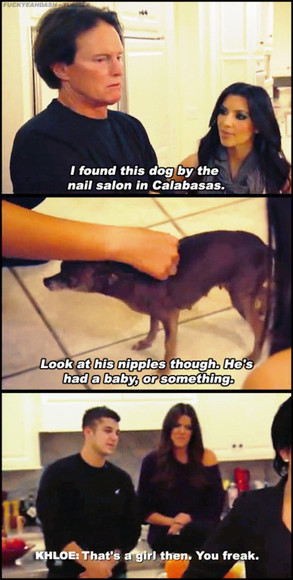 Khloe schools Bruce again, this time about dog anatomy