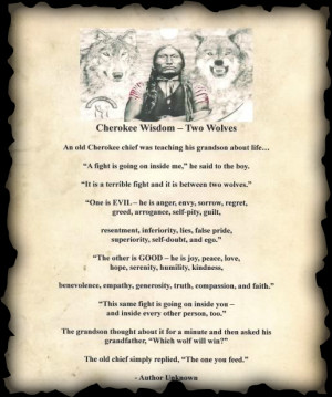 came across this Cherokee Wisdom teaching story about two wolves: Good ...
