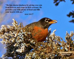 Animals In Heaven Bible Verses Bird photo with bible verse 10