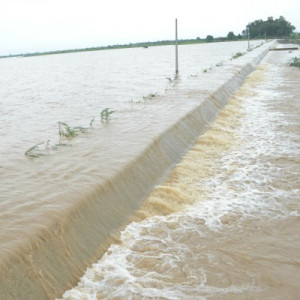 Water level of Kosi River in Bihar increased on Sunday after the ...
