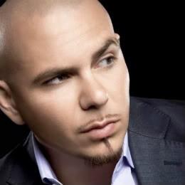Pitbull Quotes & Sayings