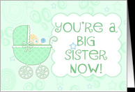 Big Sister Quotes New Baby