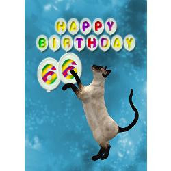66th_birthday_card_with_a_cat_greeting_card.jpg?height=250&width=250 ...