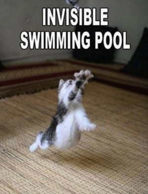 Invisible-Swimming-pool