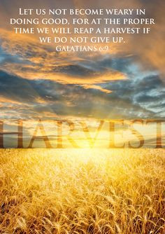 ... time we will reap a harvest if we do not give up. (Galatians 6:9