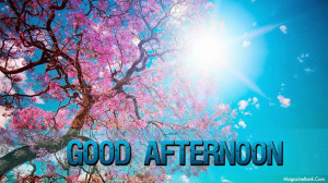 accross this noon happily good afternoon have a good afternoon