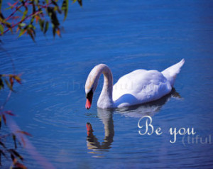 Quotes Swans ~ Famous quotes about 'Swan' - QuotesSays . COM
