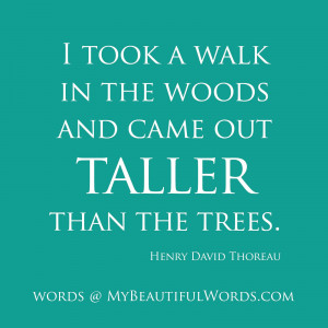 into_the_woods_quotes_image_gallery1.jpg