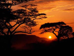 Fondos de Pantalla / Atardeceres / Atardecer en Africa