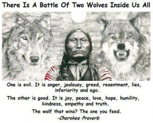 there is a battle of two wolfs inside us all one is evil it is anger ...