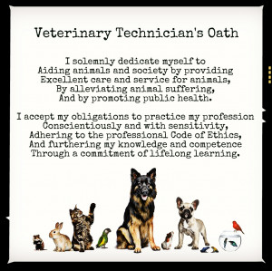 quotes funny vet tech quotes funny calm down funny vet tech quotes ...