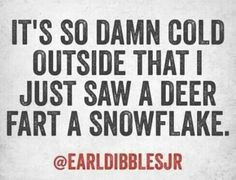 It's So Damn Cold Outside That I Just Saw A Deer Fart A Snowflake. # ...