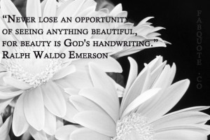 Never Lose An Opportunity Of Seeing Anything Beautiful - God Quote
