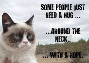 grumpy cat summarises it well