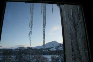 icicle funny 2 icicle funny 3 icicle funny 4 icicle funny 5 icicle ...
