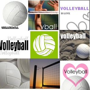 Volleyball Collage | PunjabiGraphics.