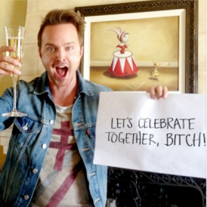 breaking-bad-jesse-pinkman-bitch.jpg