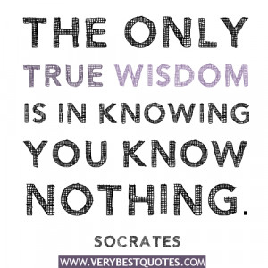 The only true wisdom is in knowing you know nothing quotes