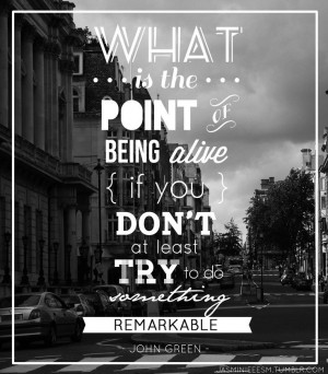 what is the point of being alive if you don t at least try to do ...