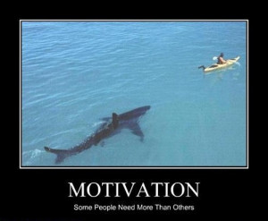 funny caption picture motivation shark chasing canoe some people need ...