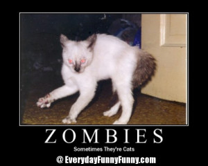 Funny Zombie pictures 8 Zombies...Sometimes Theyre Cats