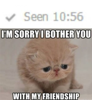 Sad Cat Is Sorry It Bothered You With It's Friendship Meme