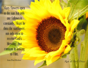 Sunflower Sayings