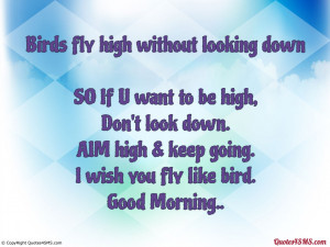 Birds fly high without looking down...