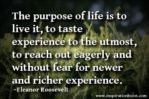 life without purpose quote
