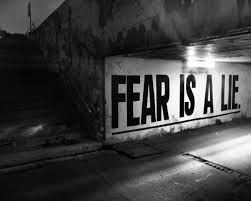 no fear quotes - Google Search