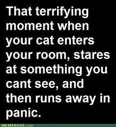 Funny & Insane & True