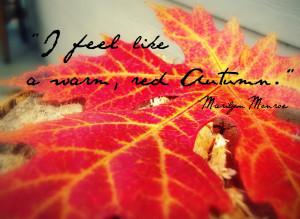 Autumn Quotes Autumn quotes