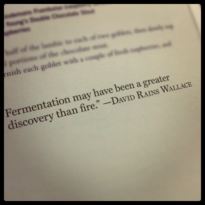 Great quote from Beer Cocktails! #Beer #Brew