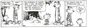 life lesson from Calvin and Hobbes