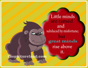 Funny Monkey Quotes And Sayings Photo