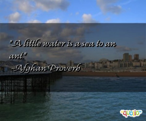 little water is a sea to an ant.