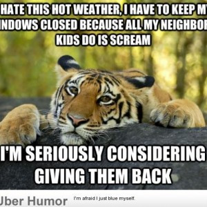 funny quotes about summer heat funny quotes about summer heat funny ...