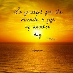... www.facebook.com/... #gratitude #inspirational #quotes #joyofmom More