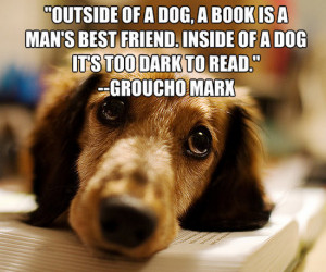 Dogs Are Best Friends Quotes